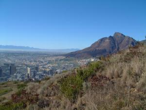 Devil's Peak and Central Cape Town