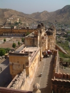 Amer Fort Elephants Jaipur