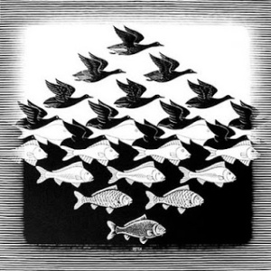 Escher's Birds and Fish