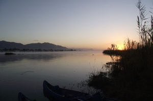 22 Zambezi Misty Sunrise